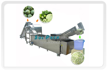 Vegetable/Fruit Cutting & Washing Line